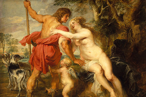 Peter Paul Rubens (Flemish, 1577–1640). Venus and Adonis (detail), mid- or late 1630s. Oil on canvas, with added strips; 77 3/4 x 95 5/8 in. (197.5 x 242.9 cm). The Metropolitan Musuem of Art, New York, Gift of Harry Payne Bingham, 1937 (37.162)