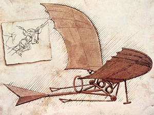codex-flight-birds