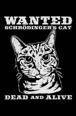 o_gato_de_schrodinger_quis_inoperante_ou_vivo_poster.rbe233e9e9bac477894317efb8da00882_wvg_8byvr_512
